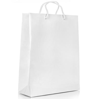 Пакет бумажный Белый под печать